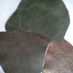Фото кожи для ремесленников
